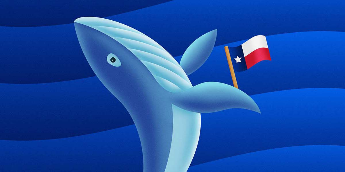 whale with texas flag